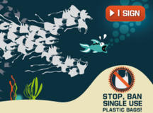 Stop, ban single use plastic bags !